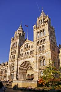 File:Entrance to Natural History Museum, Cromwell Road, London SW7 - geograph.org.uk - 1034304.jpg