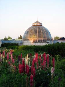 File:Belle Isle Whitcomb Conservatory.jpg
